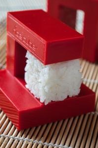 Rice Cube-0021