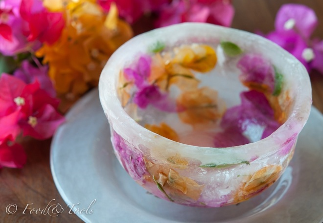 ice bowl-2272