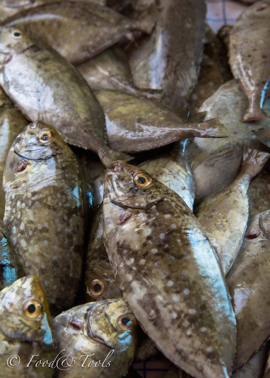 Local Bahraini Fish_Safie