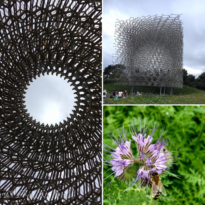 The Hive at Kew Gardens-8209